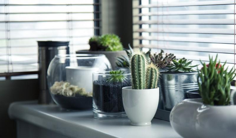 Indret dit hjem hyggeligt og skandinavisk