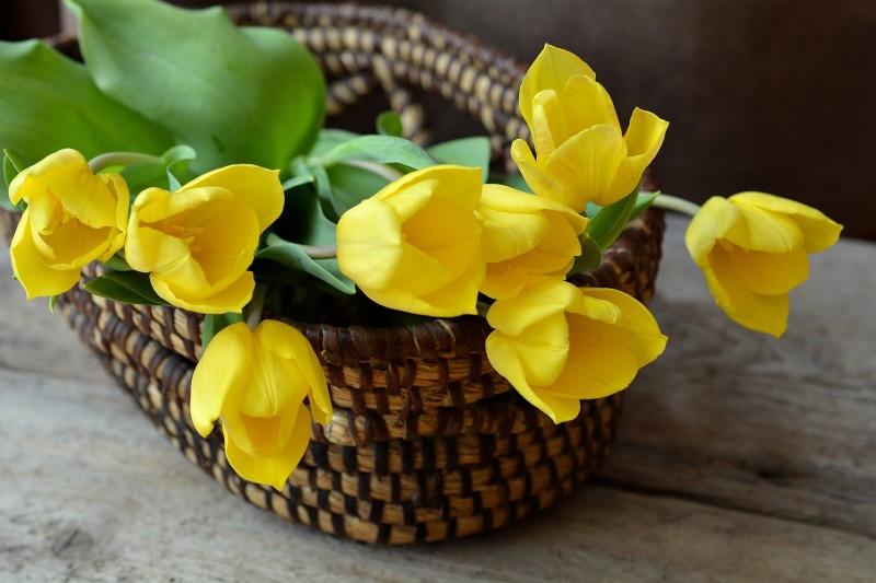 Flotte hjem og stemningsfulde kontorer med kunstige blomster